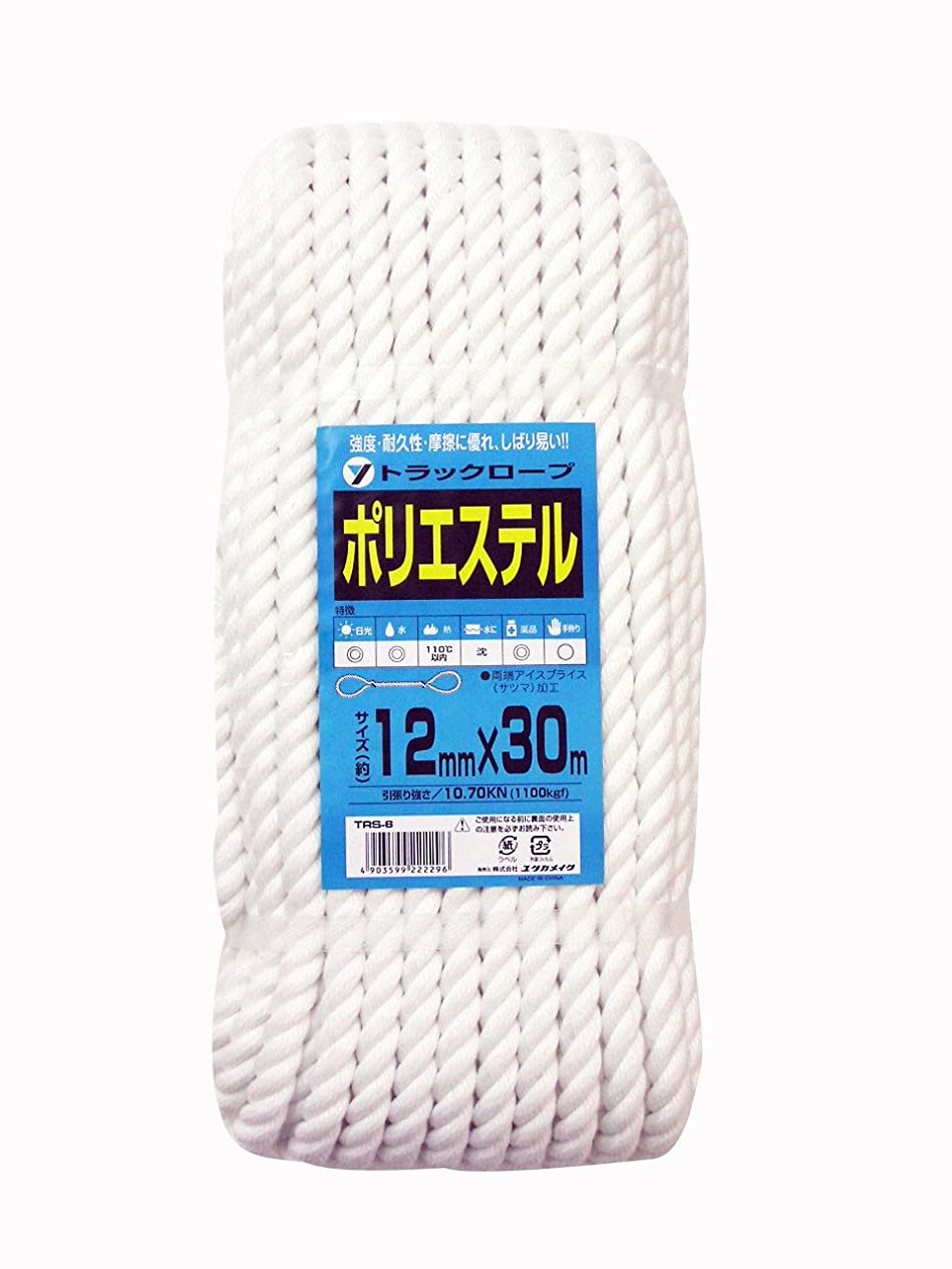 子音話す教育者ユタカメイク ポリエステルトラックロープ 12mm×30m TRS-6