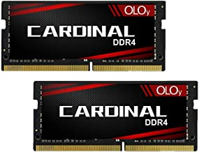 OLOy Memory DDR4 RAM 64GB (2x32GB) 2666 MHz CL19 1.2V 260-Pin Laptop Gaming SODIMM Upgrade for 2019 iMac 27-inch with Retina 5K Display, Late 2018 Mac Mini (MD4S322619MZDC)