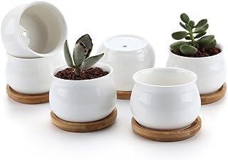 T4U 7CM Keramik Sukkulenten Töpfe Kaktus Pflanze Töpfe Min