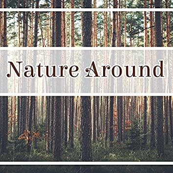 Nature Around - Calming Nature, Soothing Sounds, Nice Rhythms, Fantastic Feeling