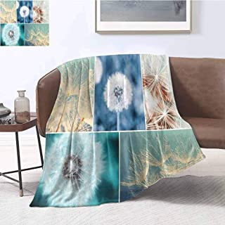 Luoiaax Dandelion Luxury Special Grade Blanket Blooming Dandelion Flowers Fluffy Soft Purity Fragrance Natural Organic Color Collage Multi-Purpose use for Sofas etc. W70 x L70 Inch Blue