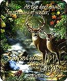 Regal Comfort Deer Creek Scripture Medium Weight Faux Fur Blanket