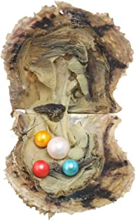 HENGSHENG Pearl Oyster 1 PC Saltwater Cultured Akoya Pearl Oyster with 10-13 mm Edison Pearl 7-8mm Pearl Inside for Jewelr...