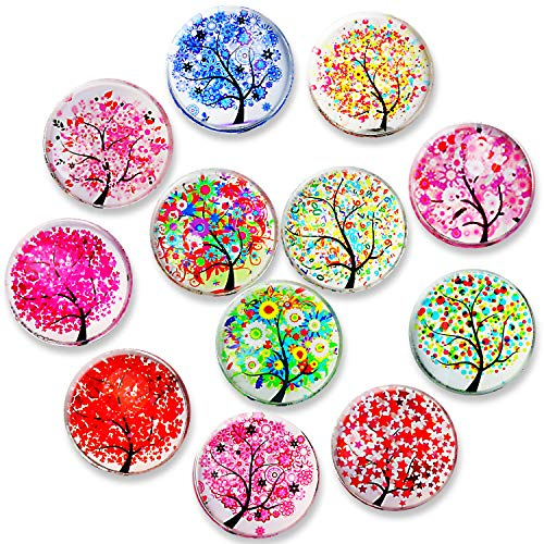Bolatus 12Pcs Fridge Magnets, Office Magnets Set Strong Small Magnet Crystal Glass Neodymium Refrigerator Magnets for Whiteboard Kitchen Home Decoration Map Arts Crafts Assorted Colour(Tree Of Life)