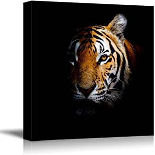 Canvas Prints Wall Art - Tiger Head in Dark | Modern Home Deoration/Wall Decor Giclee Printing Wrapped Canvas Art Ready to Hang - 24