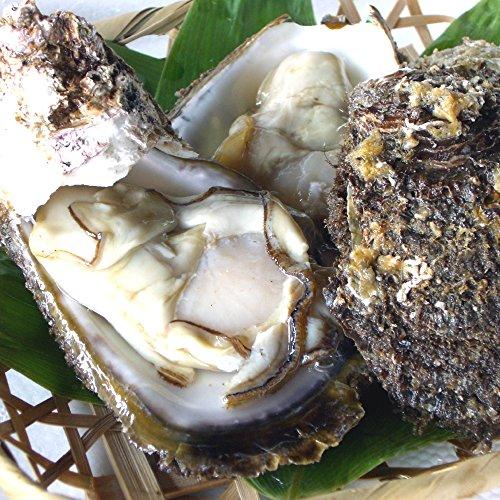 笹川流れ 岩牡蠣(岩がき・生牡蠣) むき身・10個セット/新潟 村上市 山北 天然岩がき 生食