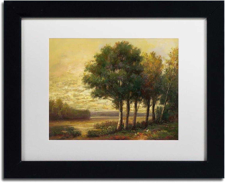 Trademark Fine Art Tranquility by Daniel Moises, White Matte, Black Frame 11x14