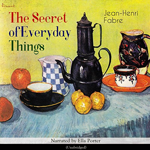 The Secret of Everyday Things audiobook cover art