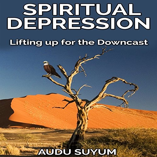 Spiritual Depression: Lifting Up for the Downcast cover art