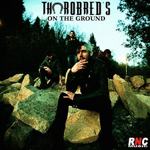 Thorobred's