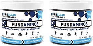 FUNDAMINOS - 60 servings- Great-Tasting Essential Amino Acid Powder + BCAA Blend, Organic, Plant-Based Athlete Endorsed, Physician Formulated for Peak Strength and Faster Muscle Recovery - (390 grams)