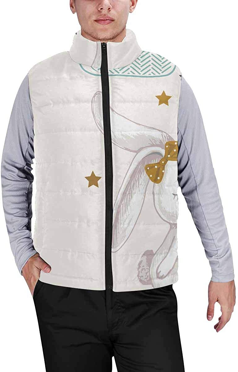 InterestPrint Men's Lightweight Vest Softshell for Camp Cute Dolphins Ocean Wave