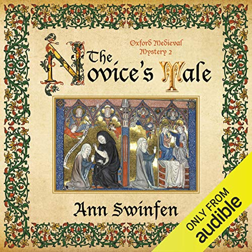 The Novice's Tale audiobook cover art
