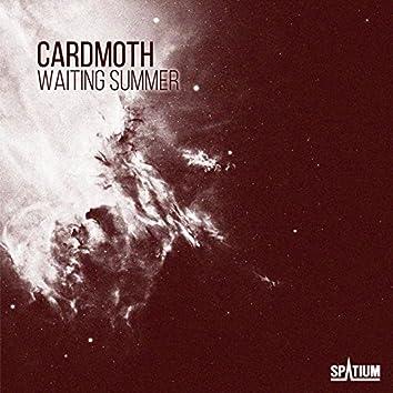 Waiting Summer