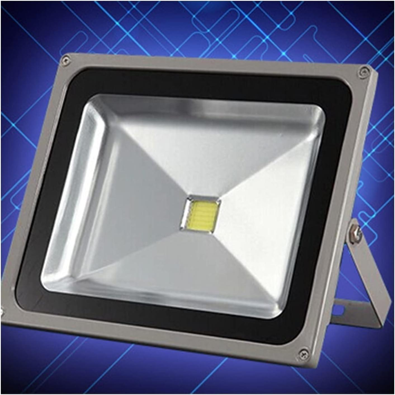 BDSHL LED Outdoor Spotlights IP65 Lighting Product Color Waterproof Spasm price AC85