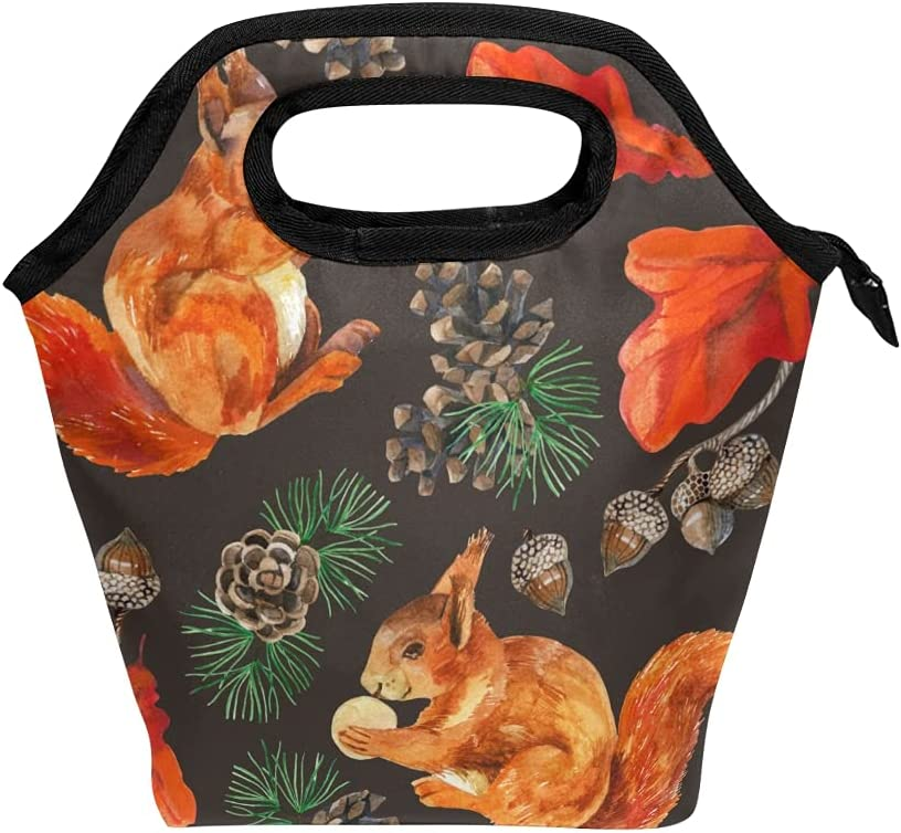 HAIIO Lunch Bag Watercolor Squirrel Chestnut Portable Cooler Bag Reusable Zipper Meal Bag Tote Handbag for Men Women Boys Girls
