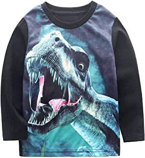 Little Boys Dinosaur Sweatshirt Toddler Top T-Shirt T-Rex Dino Baby Long Sleeve Clothes