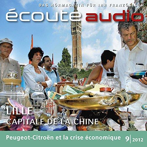 Écoute audio - La braderie de Lille. 9/2012 audiobook cover art