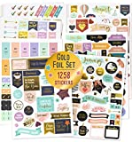 Gorgeous Gold Foil Planner Stickers - 1250+ Stunning Design Accessories Enhance and Simplify Your Planner, Journal and Calendar
