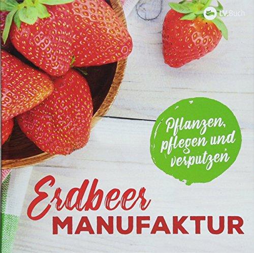Erdbeer-Manufaktur: Pflanzen, pflegen und verputzen.