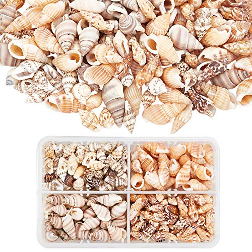 PandaHall About 70g/330pcs 4 Styles Spiral Shells, Ocean Beach Conch Seashells with Hole and No Hole for Bracelet Jewelry, Craft, Home Decoration, Fish Tank and Vase Filler
