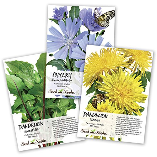 Seed Needs, Dandelion Seed Collection (3...