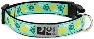 RC Pet Products Adjustable Pineapple