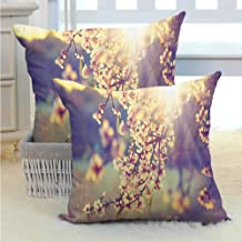 SEMZUXCVO Nature Breathable Pillowcase Spring Season Romantic Flowers Blossoms Trees Sunbeams Artwork Photo Soft and Breathable W16 x L16 inch White Pink Purple Grey