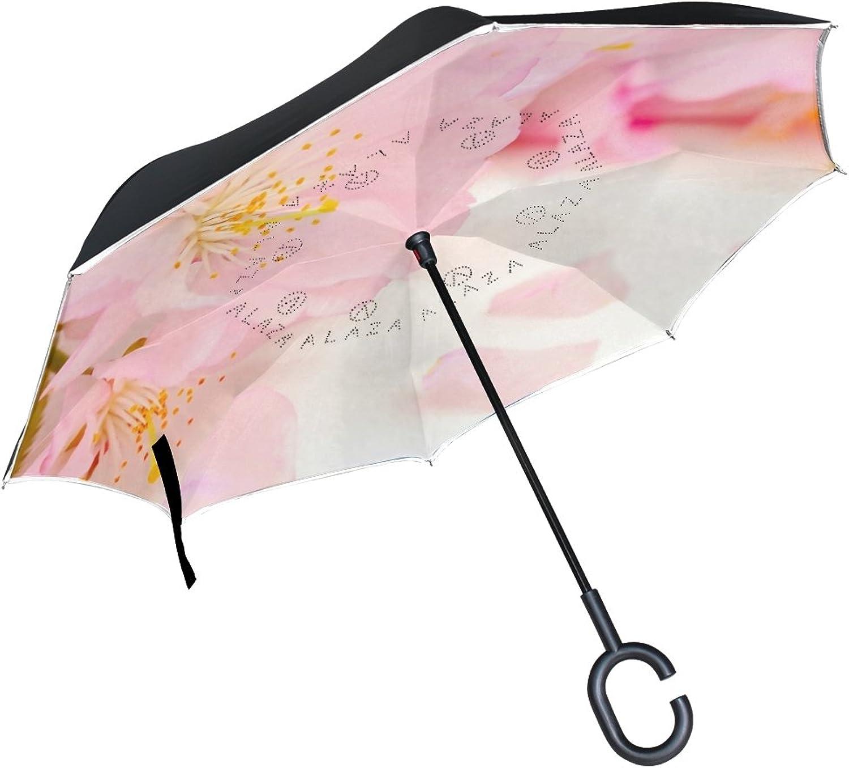 IMOBABY Straight Selfstanding Reserve Umbrella Pink Flowers Japanese Cherry Blossom Double Layer Ingreened Folding Umbrella Waterproof Umbrellas for Car
