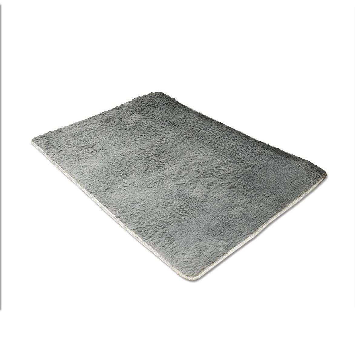 文化孤独な書き込みカーペット ラグ マット 洗える 絨毯 滑り止め ベッドルーム リビングルーム 80*120cm