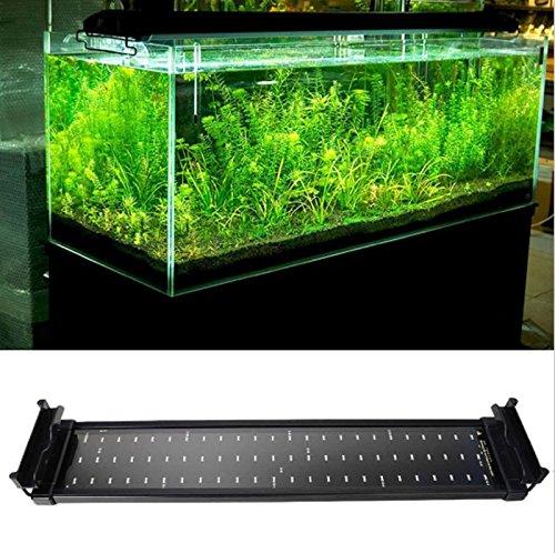 Polarbear's Pet Shop Aquarium Fish Tank SMD Led Light Lamp 11W 2 Mode 50Cm 60 White + 12 Blue EU/UK/Us Plug Marine Aquarium Led Lighting Aquario (19.74.12.4
