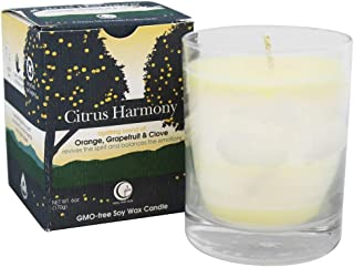 Way Out Wax Scented Candle; Citrus Harmony (6 oz)