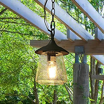 """Log Barn 1 Light Outdoor Lantern Pendant Lighting in Painted Black Metal with Clear Bubbled Glass Globe, 9.4"""" Hanging Lamp for Porch, A03355"""