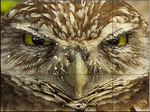 Cerámica de azulejos - Who Are You-por Sean Allen - salpicaduras de la cocina / baño de ducha