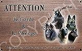 pets-easy. com, pedigree pastore belga [in lingua francese] 20 par 10 cm