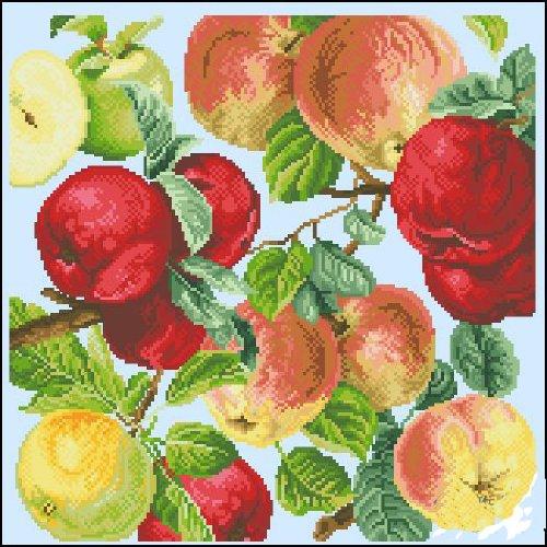 クロスステッチ 刺繍キット 豊作リンゴ (DMC刺繍糸) 図柄印刷  hc569