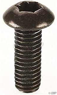 Hayes Torx-T25 rotor bolts, (12/pack)