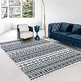 N\W Alfombra grande para decoración del hogar, alfombra tejida impresa para sala de estar, dormitorio, alfombra lavable, antideslizante, alfombra para puerta de baño, cocina, pequeñas alfombras