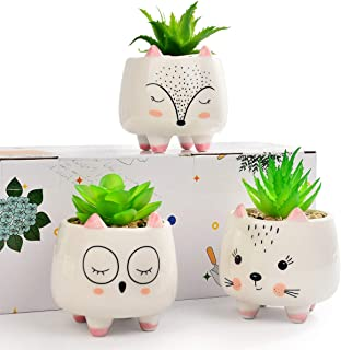 3 Assorted Small Artificial Succulents Potted with White Porcelain Pots Fake Plants in Ceramic Animal Planter Gift Set for...