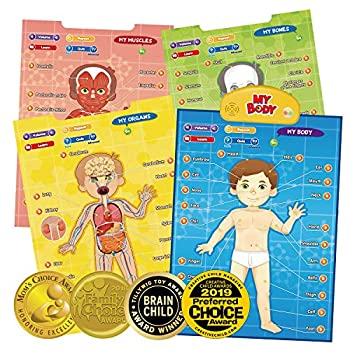 BEST LEARNING i-Poster My Body - Interactive Educational Human Anatomy Talking Game Toy System to Learn Body Parts Organs Muscles and Bones for Kids Aged 5 to 12 Years Old