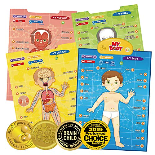BEST LEARNING i-Poster My Body - Interactive Educational Human Anatomy Talking Game Toy System to Learn Body Parts, Organs, Muscles and Bones for Kids Aged 5 to 12