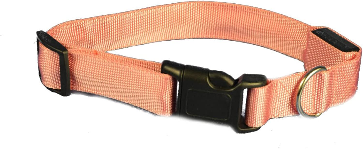 Aviditi BC704L LED Lighted Dog Collar, Pink with Pink LED Lights, Large