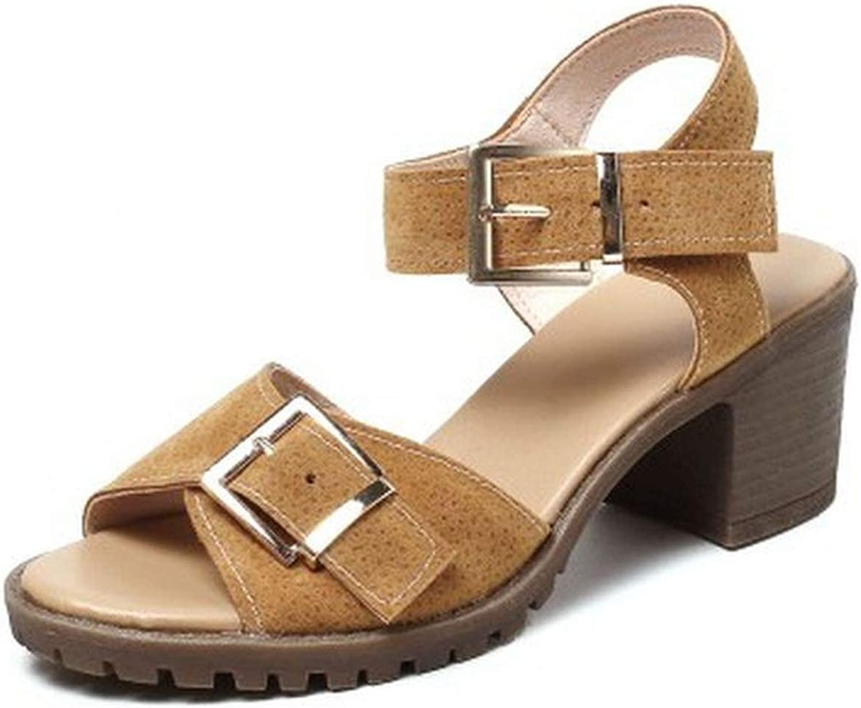 Gladiator shoes Women Thick Heels Sandals Women Metal Buckle Open Toe shoes Women