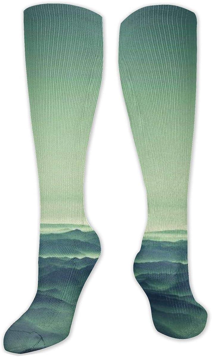 Seagull Greeen Background Knee High Socks Leg Warmer Dresses Long Boot Stockings For Womens Cosplay Daily Wear
