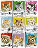 Prophila Collection Paraguay 3218-3226 (kompl.Ausg.) 1979 Katzen (Briefmarken für Sammler) Katzen