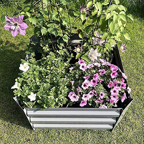 CDFCB Raised Garden Bed Galvanized Planter Metal Raised Garden Bed Kit Elevated Flower Boxes Square Steel Planter Vegetable Flower Bed Kit Bottomless 23.6 x 23.6 x 11.8 Gray (Color : Gray)-Gray