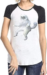 Persian Cat Room Guardian Meme Short Sleeve Raglan T-Shirt Funny Printed Shirt