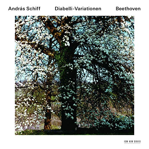 Beethoven: 33 Piano Variations In C, Op.120 On A Waltz By Anton Diabelli - Variation 20 (Andante) (Bechstein Piano)