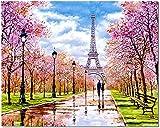 Bougimal Pintar por Numeros Adultos, DIY Pintura por Números Torre Eiffel sin Marco de 40 X 50 cm