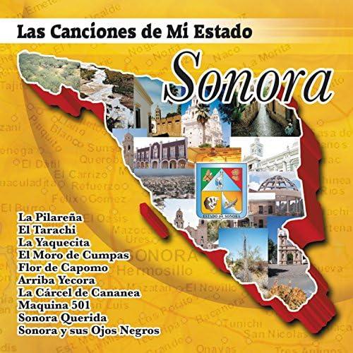 Las Canciones De Mi Estado Sonora
